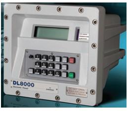 艾默生DL8000批量控制器