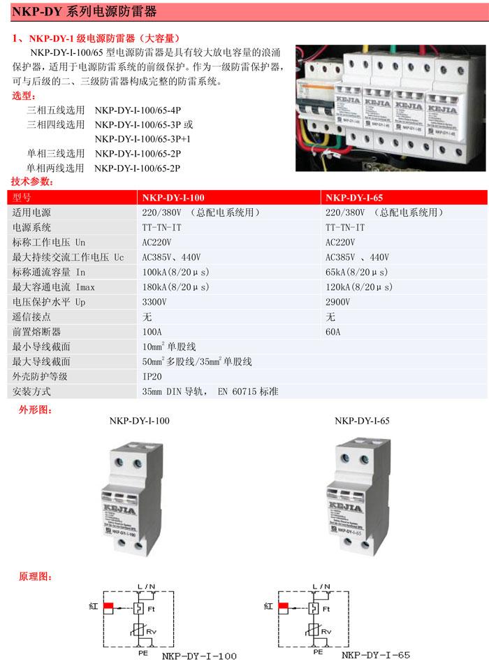 科佳NKP-DY-I电源防雷器