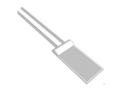 IST RTD温度传感器 / 铂电阻 / 2线式/快速响应式
