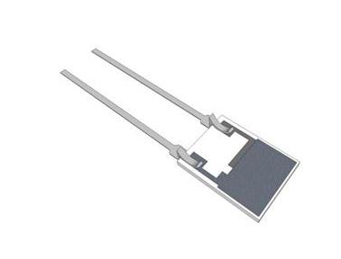 IST 相对湿度传感器 / 用于固体 / 液体 / 插入式K5-W