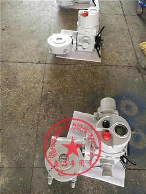 扬修电力智能蝶阀执行机构DQW500-WK