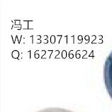 a13307119923