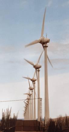 加那利群岛(Canary Island)西班牙Gran Canaria风力发电厂